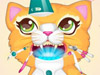 Котик у дантиста